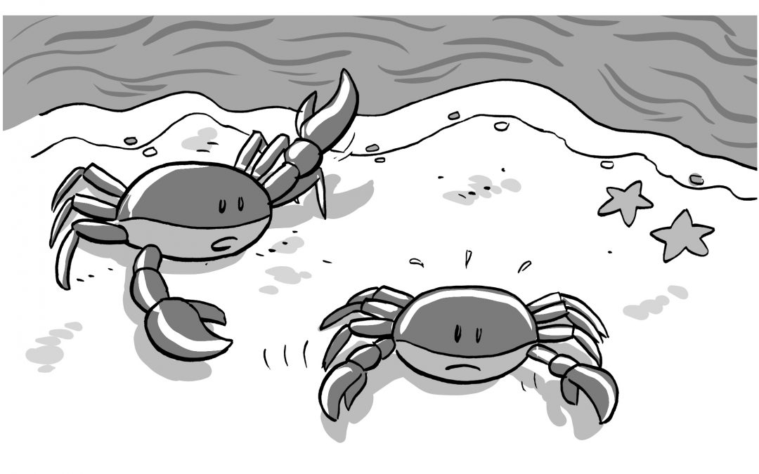 CHOW #208 – The mother crab and the baby crab